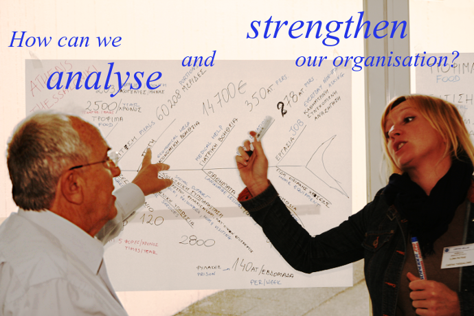 How can we analyse and strengthen our organisation?